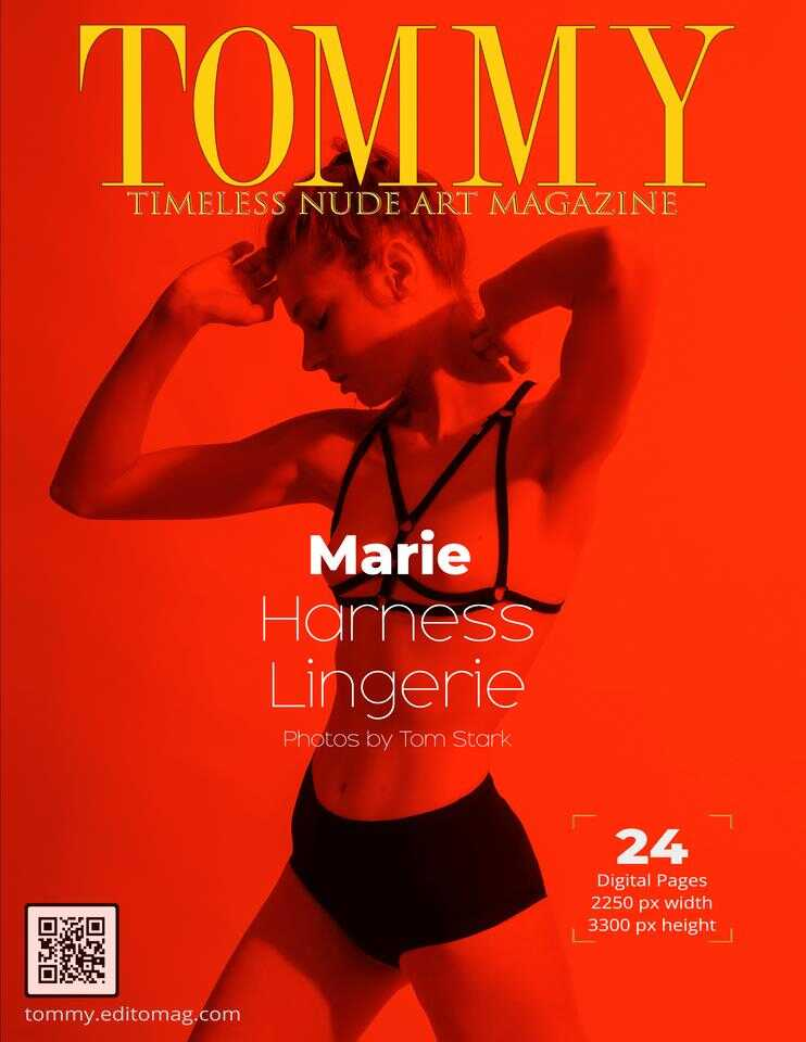 Cover Marie - Harness Lingerie