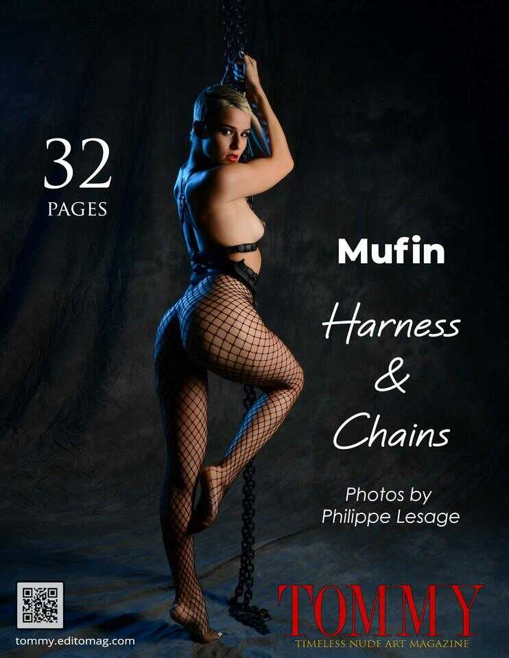 Back cover Mufin - Harness And Chains