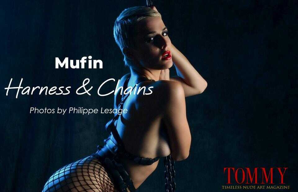 mufin.harness.and.chains